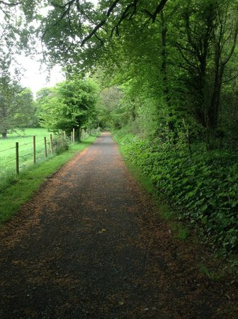 Radisson Blu Farnham Estate Hotel, Cavan: Out on a walk