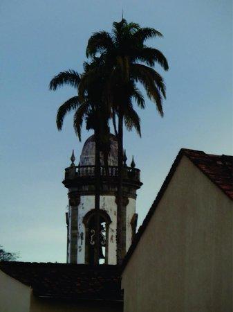 Igreja de São Francisco de Assis : Palmeira real e campanário