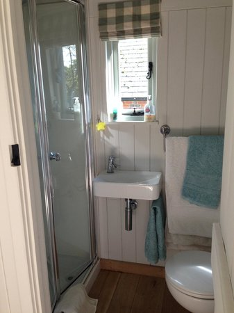 Hope Cottage Tours: Toilet and shower room in the Shepherd's Hut