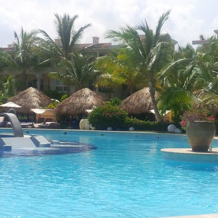The Reserve at Paradisus Punta Cana : amazing pool