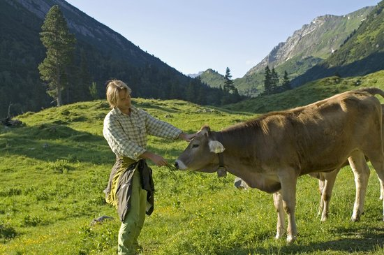 Hotel Goldener Berg: encounter with the nature