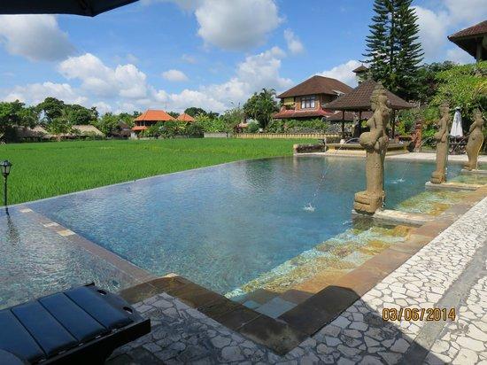 Cendana Resort and Spa: The infinity pool