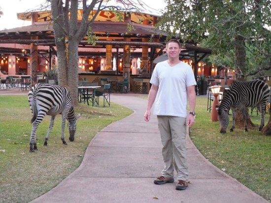 AVANI Victoria Falls Resort: Bar