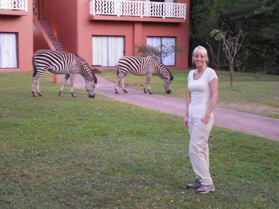 AVANI Victoria Falls Resort: Hotel & grounds