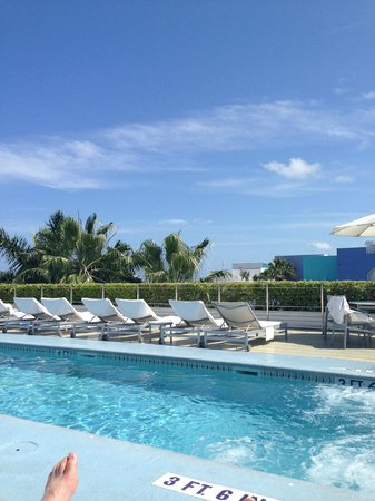 The Hotel of South Beach: Rooftop pool