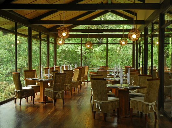 Las Ventanas Restaurant: Panoramic windows frame the farm-to-table culinary experience.