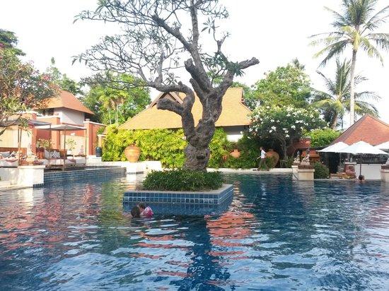 Renaissance Koh Samui Resort & Spa : piscine fantastiche