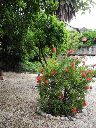 Garden at Hotel Supetar