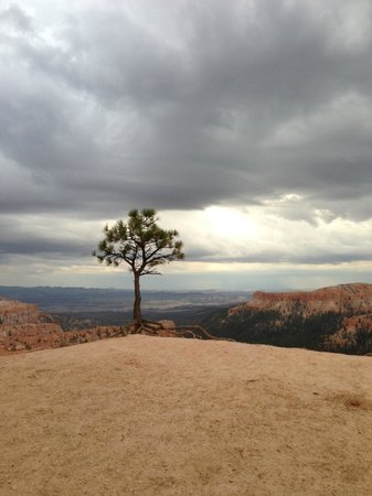 Bryce Canyon Lodge: Just at the top of the hill