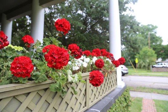 The Galloway House Inn : Side House Flowers