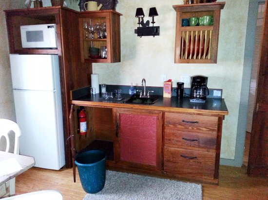 The Bed and Breakfast on Knopp School Road: Carson cabin kitchen