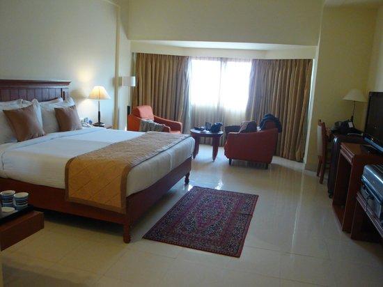 Fortune Pandiyan Hotel: Stanza