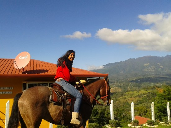 Cabañas El Parador: paseo a caballo