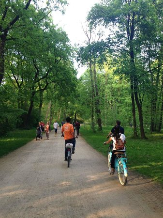 Mike's Bike Tours: Great trails to ride through