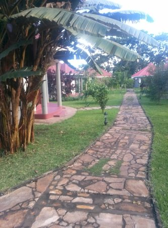 Arusha Planet Lodge : garden