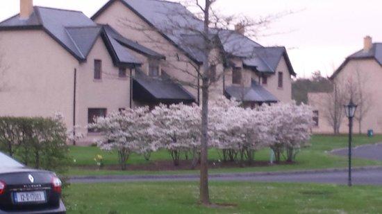 Adare Manor Hotel & Golf Resort: Front of units