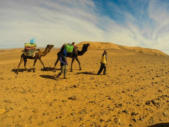 Moroccan Adventure Company - Day Tours