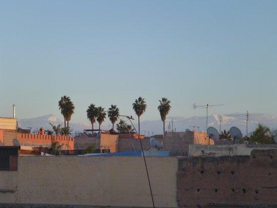 Riad les Orangers d'Alilia Marrakech : La vue de la terrasse du Riad