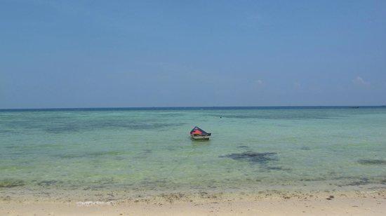 Green Papaya Resort: the beach