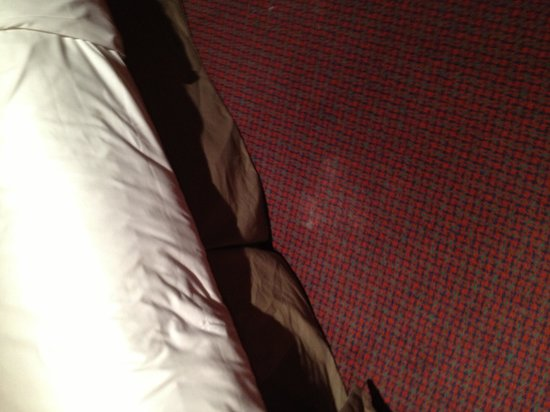 BEST WESTERN Carlton Hotel : Nice carpet stain to make u want to keep ur shoes on at all times !!