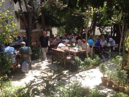 Boomerang Guesthouse & Restaurant : Garden