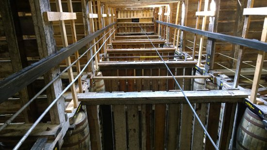 Barton 1792 Distillery : Looking up in a warehouse