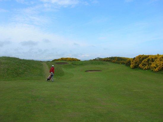 Royal Dornoch Golf Club: Royal Dornoch #2