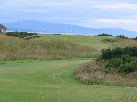 Royal Dornoch Golf Club: Royal Dornoch #2 green