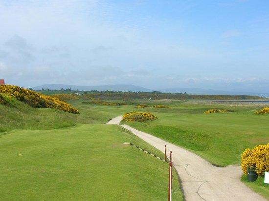 Royal Dornoch Golf Club: Dornoch #3 fairway