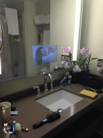 Bucuti & Tara Beach Resort Aruba : TV in the mirror!
