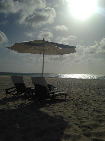 Bucuti & Tara Beach Resort Aruba : Beach chairs