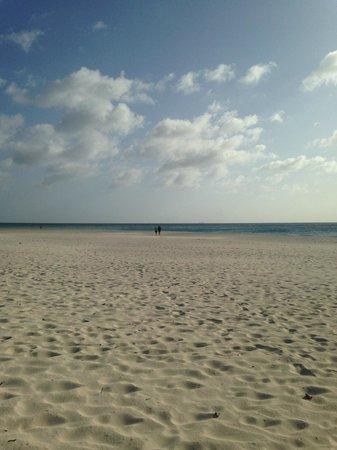 Bucuti & Tara Beach Resort Aruba : Eagle Beach