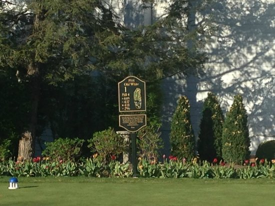 The Greenbrier: Old White Golf Course Photo #10