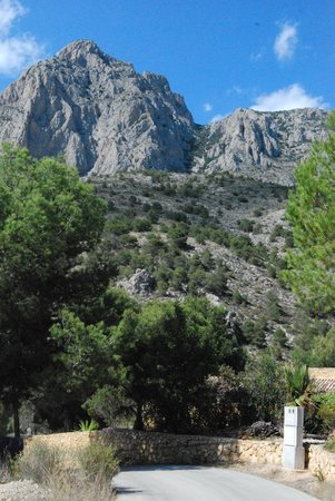 Puig Campana from Font del Moli