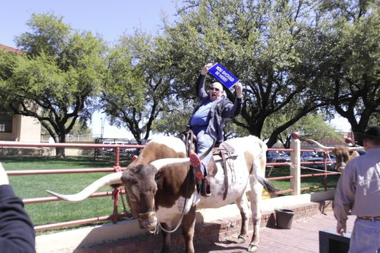 Hyatt Place Ft. Worth Historic Stockyards: Ride 'em Cowboy