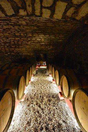 Chateau de Chamirey: wine cellar