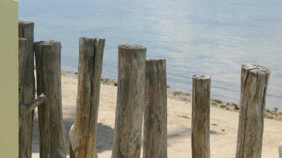 Le Divine Comedie: beach
