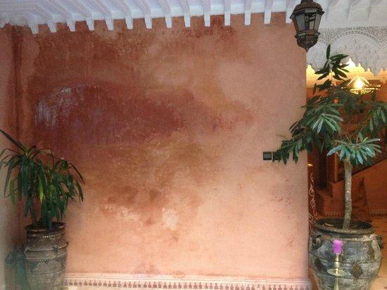 Riad Zayane Atlas : Lobby wall