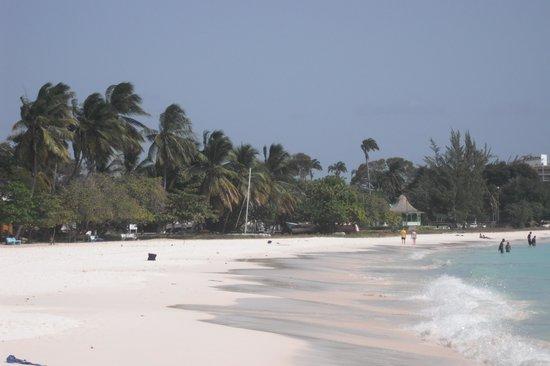 Island Inn Hotel: nearby Carlysle bay
