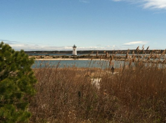 Edgartown Lighthouse : Lighthouse from pathway