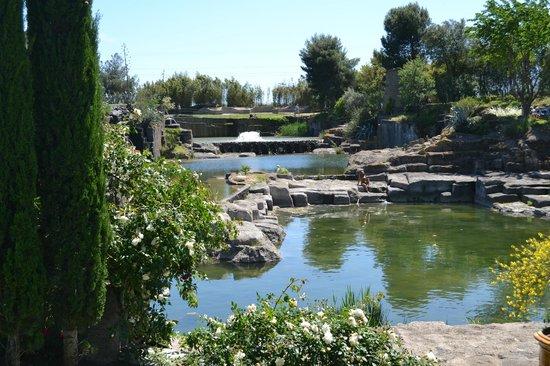 jardin de st adrien photo de le jardin de saint adrien With amenager un jardin paysager 17 jardin de saint adrien