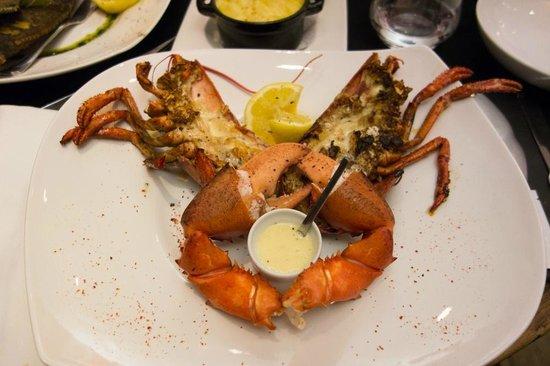 Bistro Saint Louis : Lobster
