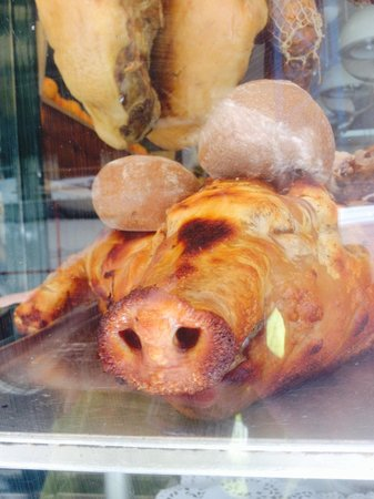 Nova Pombalina : How much is that pig in the window?