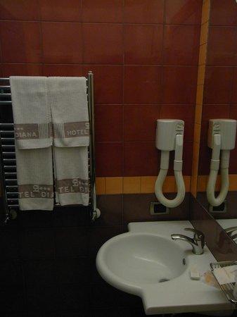 Hotel Diana Pompei: bath