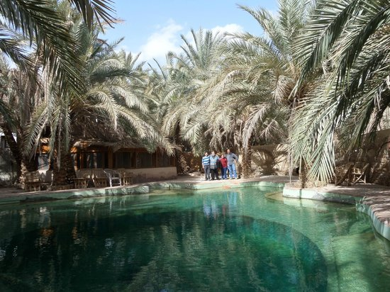 Siwa Paradise: The natural Water Well
