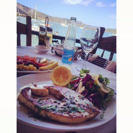 Olondi Restaurant : Grilled Swordfish
