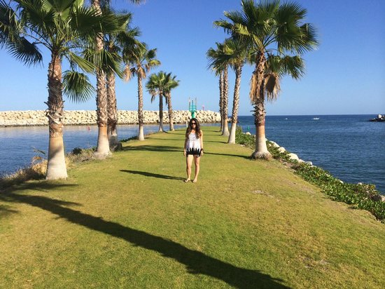 Hotel El Ganzo : Grassy knoll at the beach club