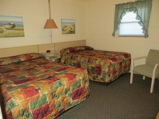 The Sand Dollar Motel : 2 double beds