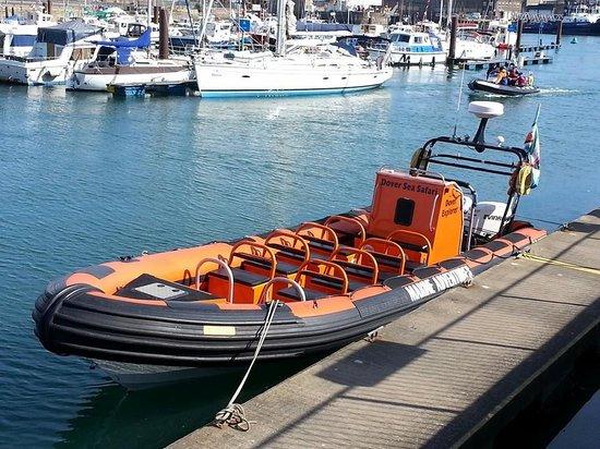 Dover Sea Safari: The boat we went on.