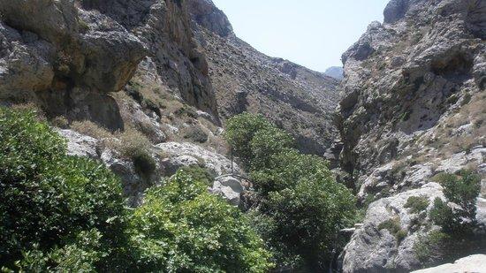 Kourtaliotiko-kloof - Picture of Kourtaliotiko Gorge ...